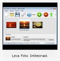Lexa Foto Inthecrack Pan And Zoom Flash Animation Templates