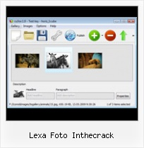 Lexa Foto Inthecrack Flash Thumbnails Gallery Resize Rollover